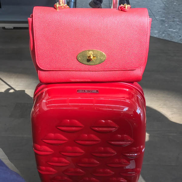 stylish luggage